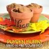Pumpkin Muffins Baked in Mini Flower Pots