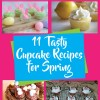 11 Tasty Cupcake Recipe Ideas for Spring
