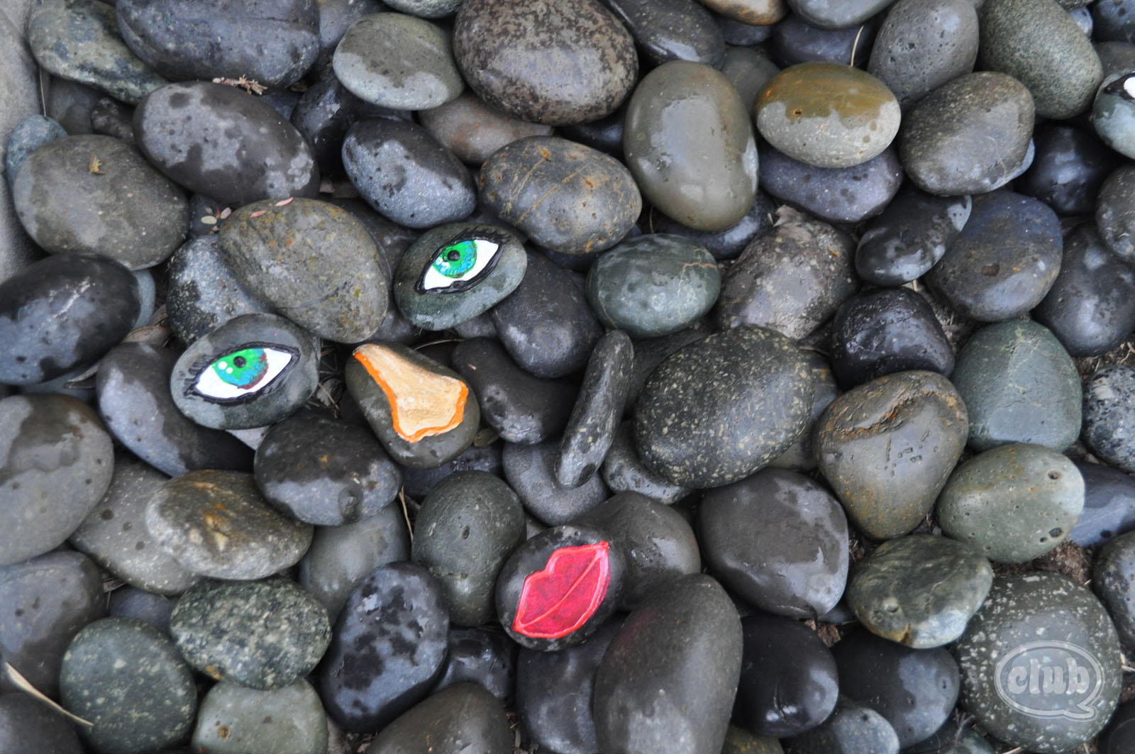 How A Dead Snail Inspired Crafting With Rocks