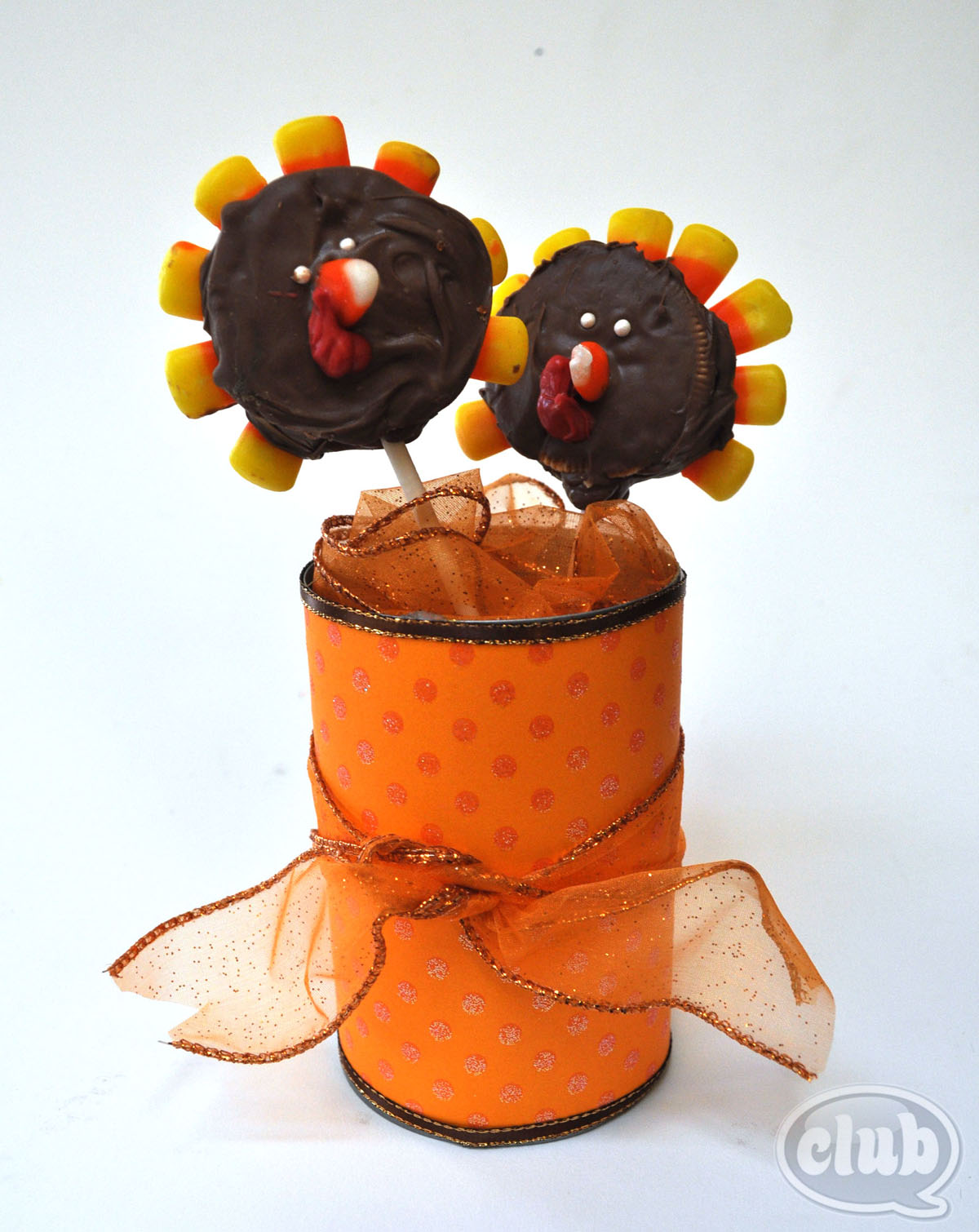 Turkey Pops in decorated can Fun, easy turkey crafts for kids to make