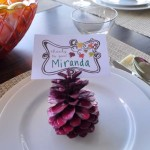 Miranda pine cone placecard feature