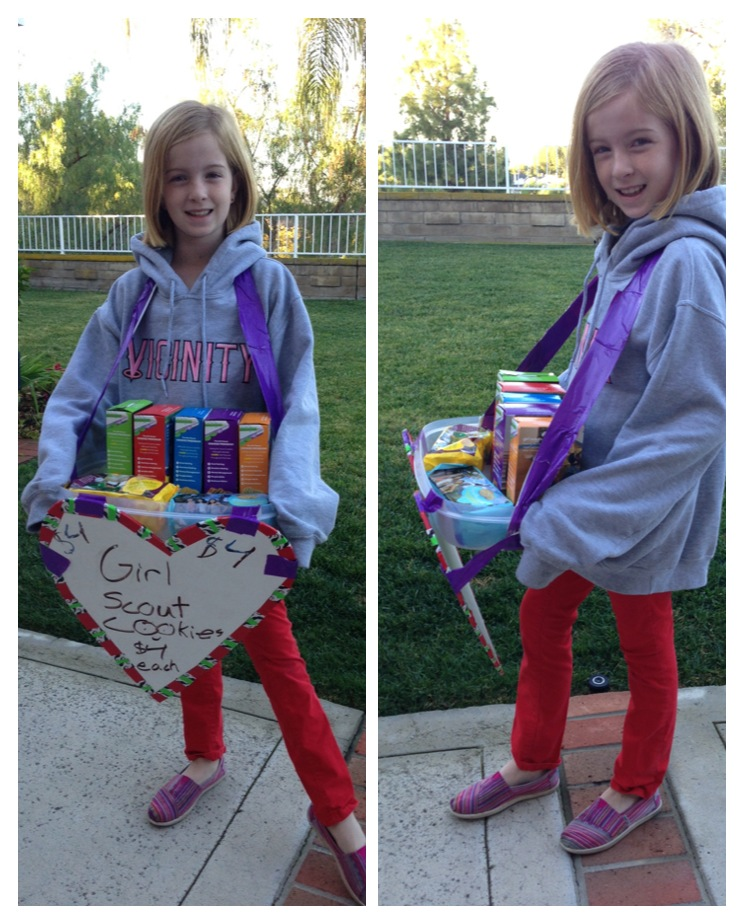 Girl Scout Carrier craft idea