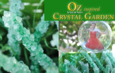 OZ borax crystal garden craft feature