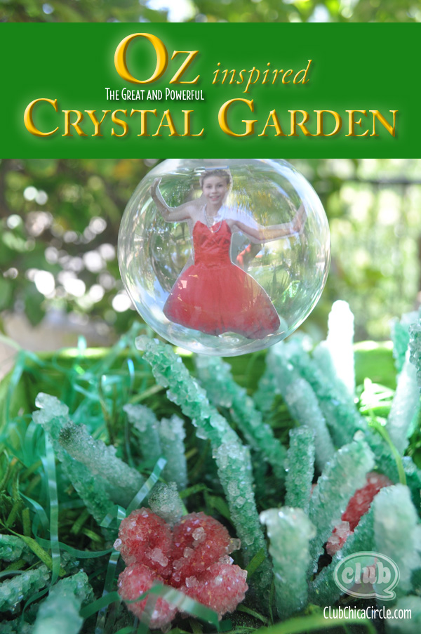 OZ crystal garden with bubble craft idea