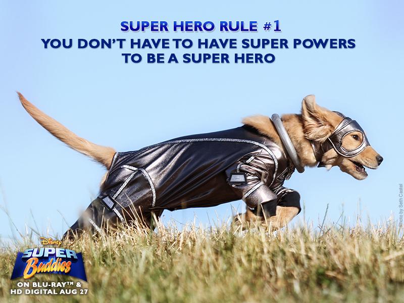 super hero rule