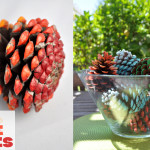 Ombre Painted Pine Cones Decoration