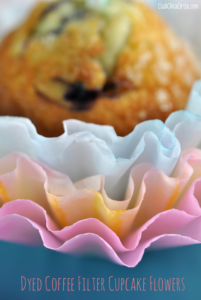 Rainbow Coffee Filter Dip Dyed Cupcake Decorations