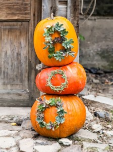 boo-spelled-in-succulents-on-pumpkins
