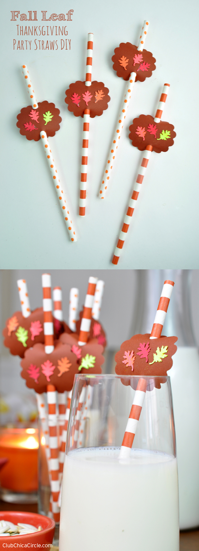 Thanksgiving Table Party Straws Tutorial