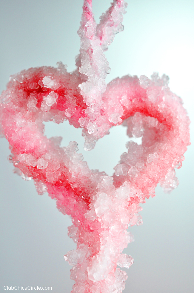 Heart Borax Crystal Ornament with Pipe Cleaners
