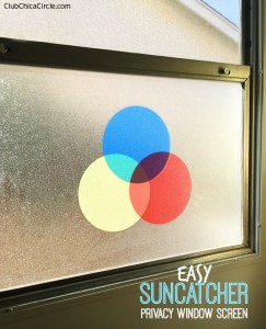 Suncatcher privacy screen in laundry room