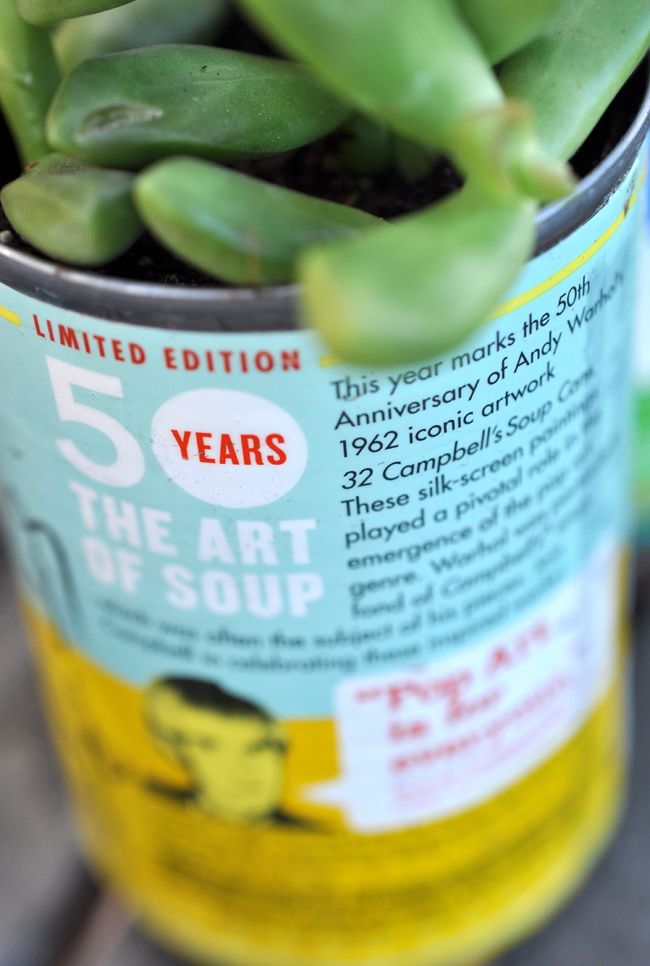 Modern art soup can succulent planter