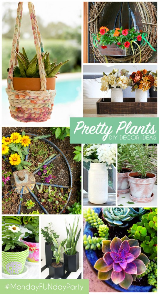 9 pretty-plants-for DIY Home Decor #mondayfundayparty
