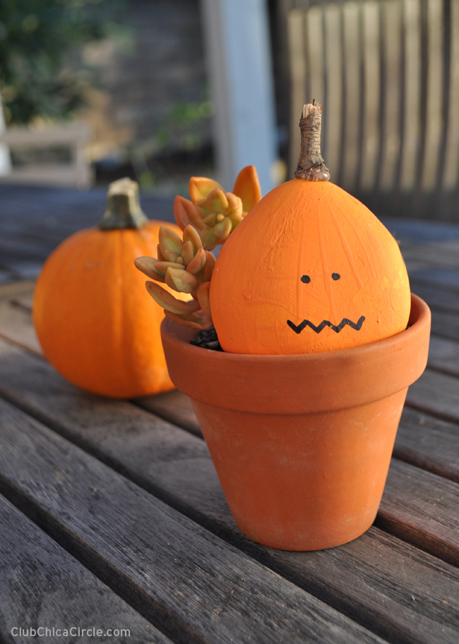 Cute and Easy Fall Painted Rock Pumpkin Craft Idea