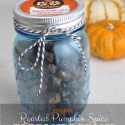 Homemade Pumpkin Spice Roasted Garbanzo Beans