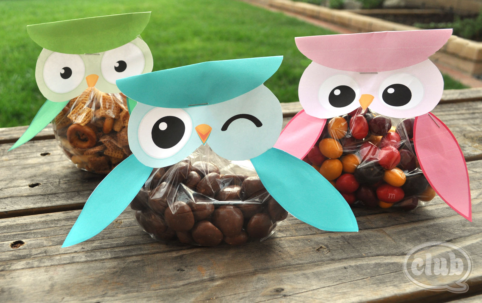 Can I Get a Hoot-Hoot!? Owl Treat Bags FREE Printable