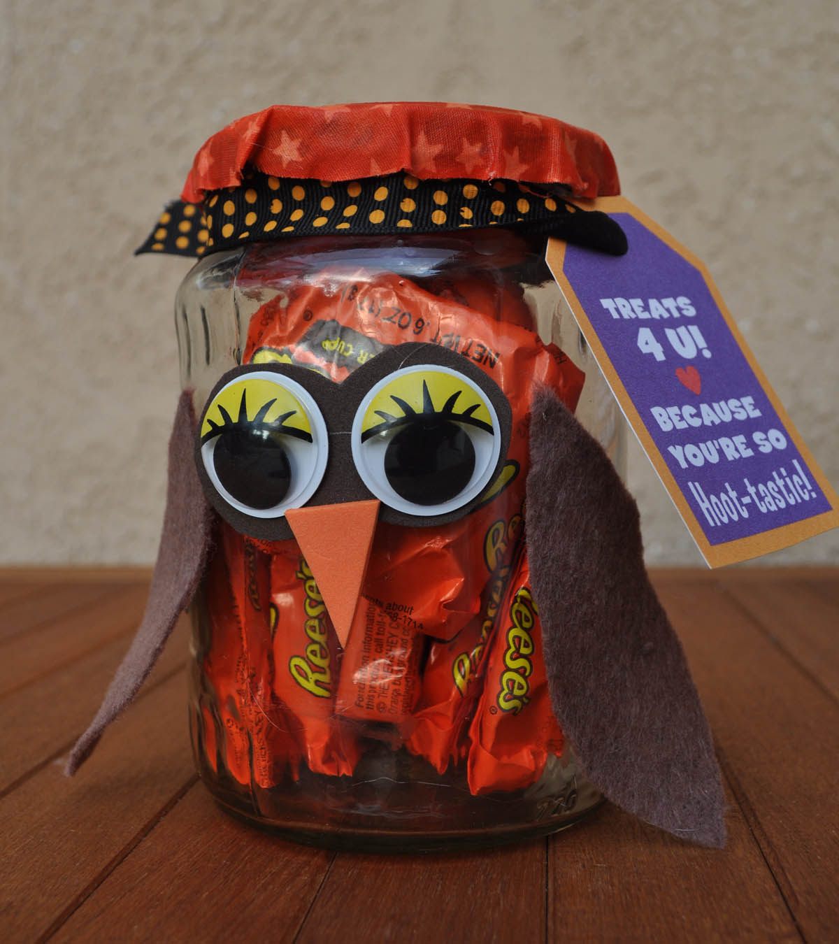 Gifts In A Jar Diy Projects Craft Ideas How To S For: Owl Candy Jars DIY Using Recycled Jars & Leftover