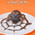 Cake Pop Spiders on Chocolate Spider web