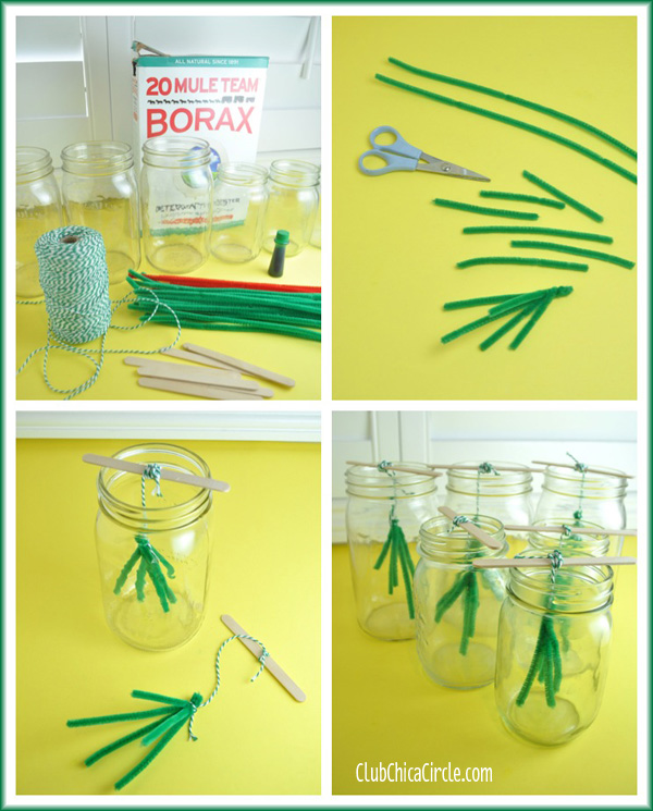 Emerald borax crystals craft idea DIY