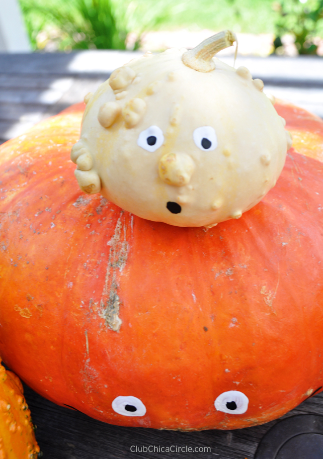 cute and funny painted pumpkins and gourds